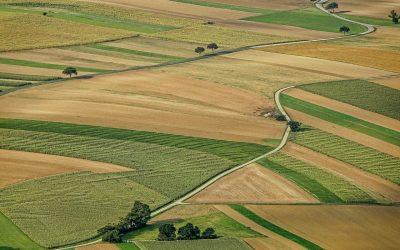 Sprzedaż gruntów i działek